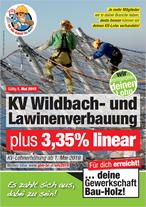 Plakat Wildbach- und Lawinenverbauung